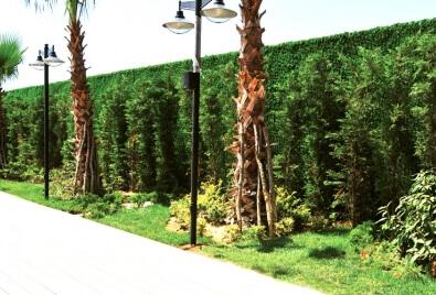 Aplicación pared de jardín