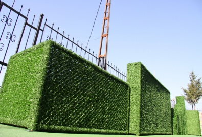 Aplicación de planta de paisaje vertical